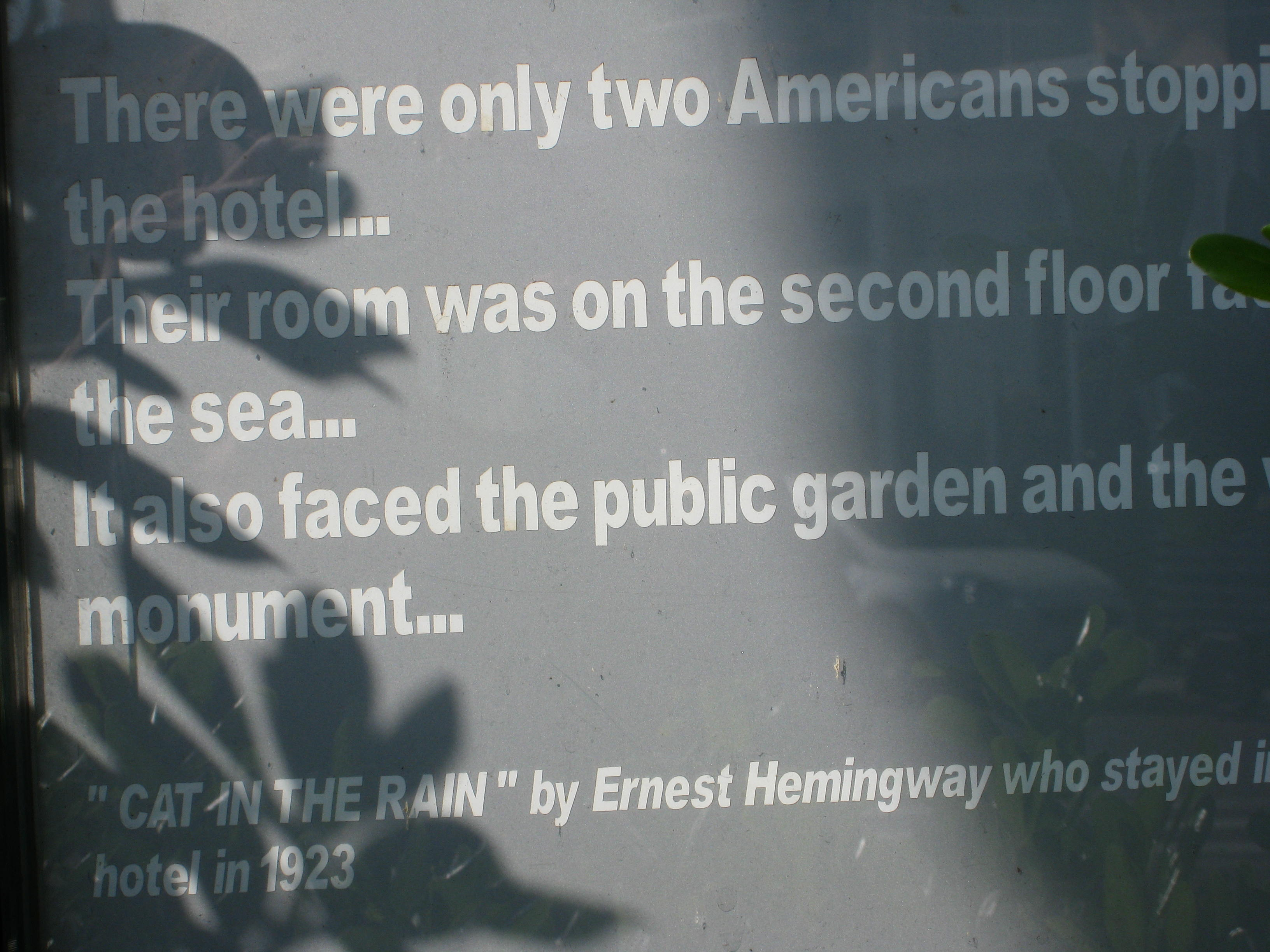 ernst hemingway cat in the rain Analysis of cat in the rain by ernest hemingway 5 pages 1334 words january 2015 saved essays save your essays here so you can locate them quickly.