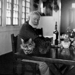 Dining room in Cuba and drinking with cat